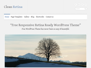 PackBlog thème Clean Retina