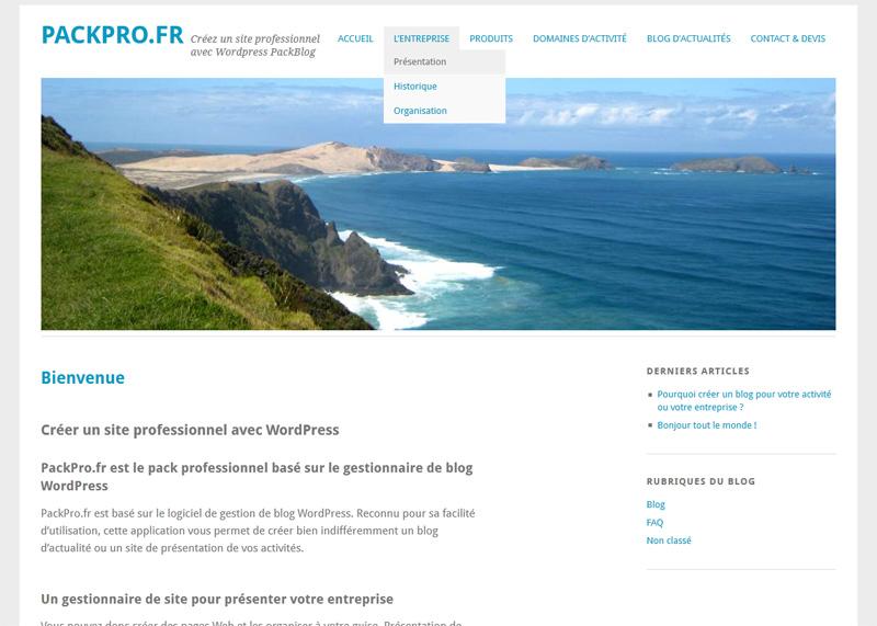 Créez un site professionnel avec WordPress PackBlog